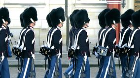Danish Royal Guard stock footage