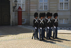 Danish Royal Guards Stock Photography
