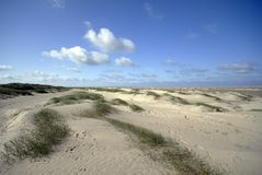 Danish Sand dunes Royalty Free Stock Photography