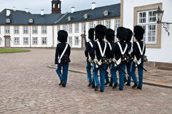 Danish squad guards Stock Photography