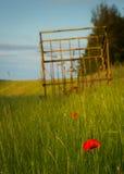 Danish summer Stock Images