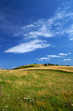 Danish summer landscape 1. A typical Danish summer landscape Royalty Free Stock Image