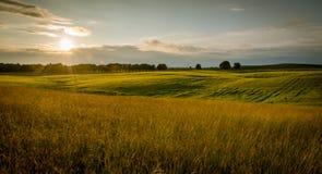 Danish summer Stock Photography