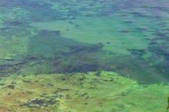 Danish undersea landscape. Near the coast Royalty Free Stock Photo