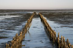 Danish Wadden sea national park Royalty Free Stock Photo