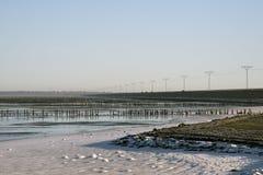 Danish Wadden sea national park Stock Image