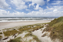 Danish West Coast. Sand dunes and blue sky. Stock Photos