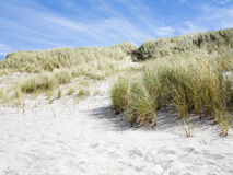 Danish West Coast. Sand dunes and blue sky. Stock Photo