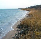 Danish wild beach Royalty Free Stock Photo