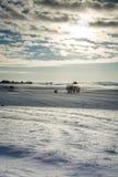 Danish winter landscape II Royalty Free Stock Photos
