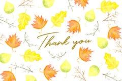 Dank u kaarden ontwerp met de herfstgebladerte Royalty-vrije Stock Afbeeldingen