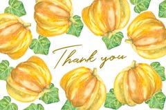 Dank u kaarden ontwerp met pompoenen Royalty-vrije Stock Foto's