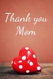 Dank u Mamma Royalty-vrije Stock Fotografie