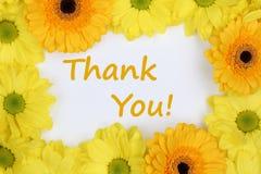 Dank u met bloemenchrysanten Stock Foto's