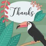Danke Gruß-Karte mit Tukan-Vogel-Illustration Lizenzfreies Stockbild