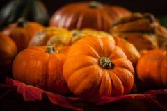 Danksagung und Halloween Stockfotos