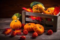 Danksagung und Halloween Stockfotografie