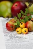 Danksagungs-Bibel Stockbild