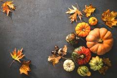 Danksagungstag oder herbstlicher saisonalhintergrund mit Kürbisen a stockbild