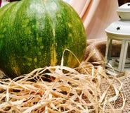 Danksagungswassermelone Lizenzfreies Stockbild