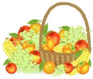 dankzegging Verzamelde een grootmoedige oogst in de mand zijn appelen, bananen, druiven, dadelpruimen en sinaasappelen Verse mooi stock illustratie