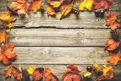 Dankzeggings herfstachtergrond Royalty-vrije Stock Foto's