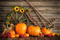 Dankzeggings herfststilleven met pompoenen Stock Foto's