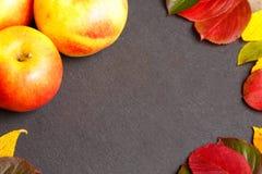 Dankzeggingsachtergrond met appelen en dalingsbladeren stock foto's