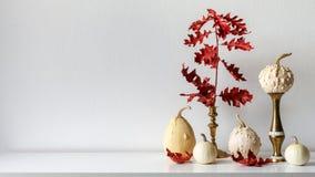 Dankzeggingsdecoratie De herfst geïnspireerde ruimtedecoratie Selectie van diverse pompoenen op witte plank tegen witte muur stock afbeeldingen