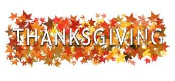 Dankzeggingstekst, woord binnen verpakt en gelaagd met herfstbladeren Geïsoleerd op wit stock fotografie