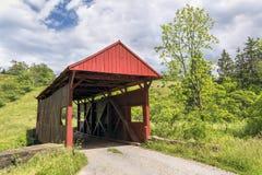 Danley täckte bron och kor Arkivbild