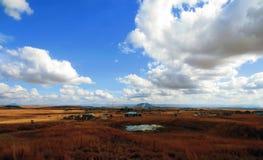 DANNHAUSER POŁUDNIOWA AFRYKA, CZERWIEC, - 2013: Krajobraz nieformalny wiejski Obrazy Stock