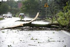 Danni provocati dal maltempo del vento Immagini Stock