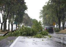 Danni provocati dal maltempo del vento Fotografie Stock Libere da Diritti