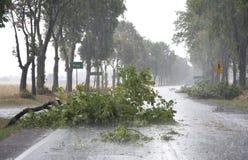 Danni provocati dal maltempo del vento Immagini Stock Libere da Diritti