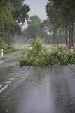 Danni provocati dal maltempo del vento Fotografia Stock
