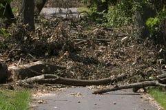 Danni provocati dal maltempo del vento Fotografie Stock