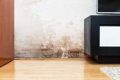 Danno causato da umidità su una parete in casa moderna Fotografie Stock Libere da Diritti