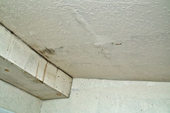 Danno del soffitto dalla perdita dell'acqua piovana Immagini Stock Libere da Diritti