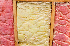 Danno di isolamento della lana di vetro del parassita del nido della formica del legno Fotografie Stock