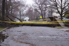 Danno di uragano Fotografie Stock
