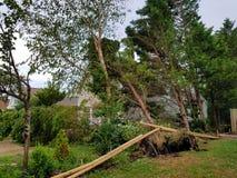 Danno di uragano Fotografia Stock