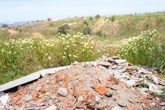 Danno ecologico fotografia stock libera da diritti