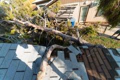 Dano da árvore ao telhado após Major Monsoon fotos de stock