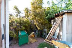 Dano da árvore ao telhado após Major Monsoon fotografia de stock