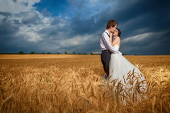 Dans des couples d'amour dans le domaine de blé avec le ciel dramatique bleu Photographie stock