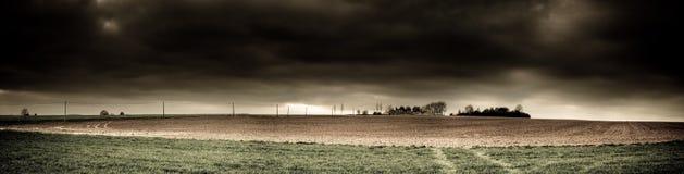 Dans des domaines de la Flandre Photo stock