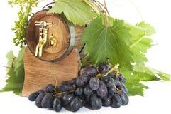 Dans des tonneaux de chêne avec des vignes et des raisins blancs et noirs Images stock