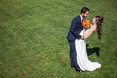 Dans l'épouse et le marié d'amour sur le champ d'herbe dans le jour d'été ensoleillé Photo stock