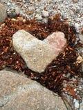 Dans l'amour avec la nature Image libre de droits